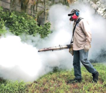 zanzare cinisello