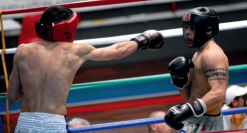 sesto sport da combattimento
