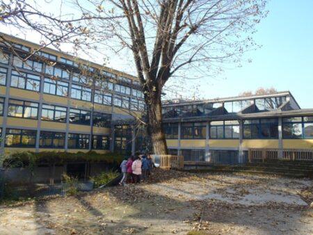 scuola costa giardino cinisello balsamo